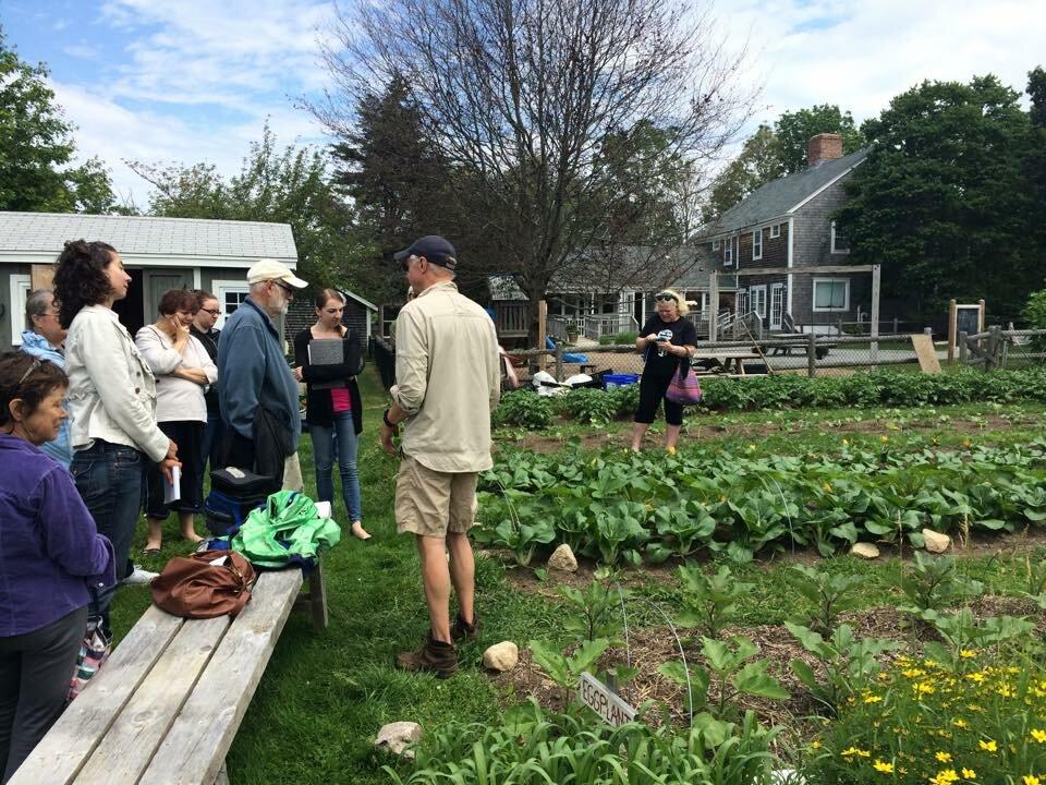 New Bedford Community Gardens